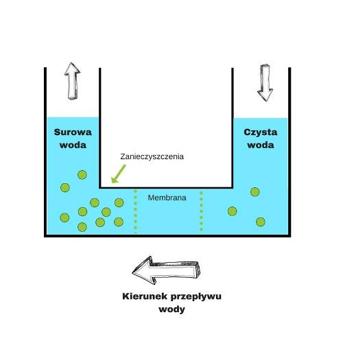 Schemat procesu osmozy